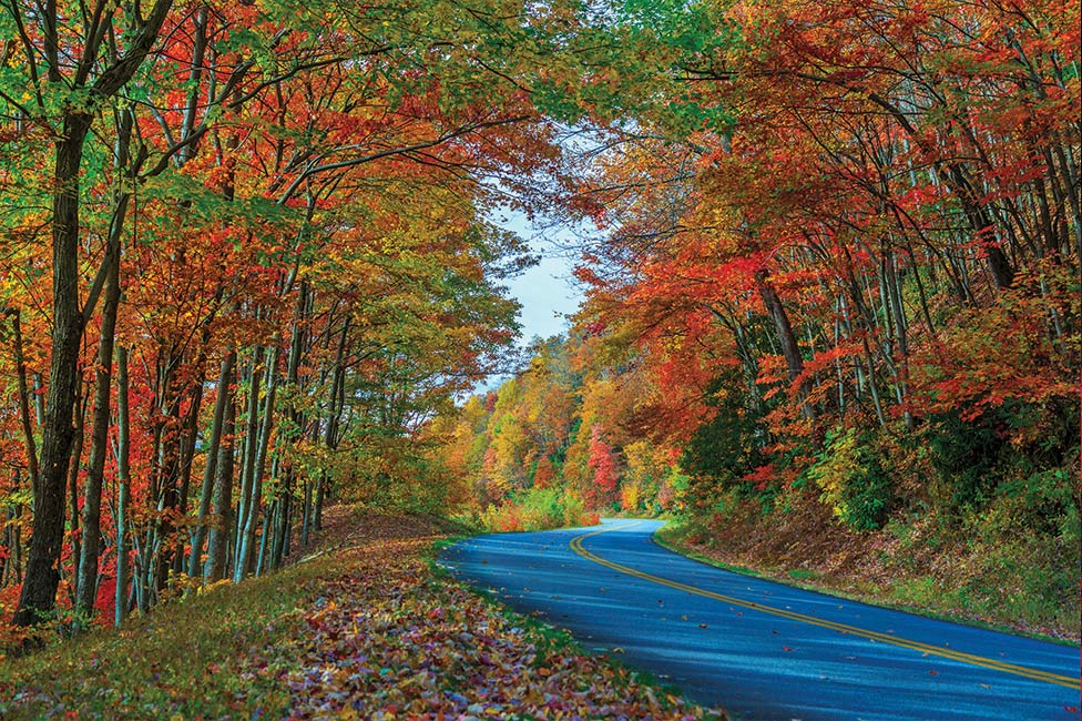 Fall foliage along Blue Ridge Parkway in Asheville