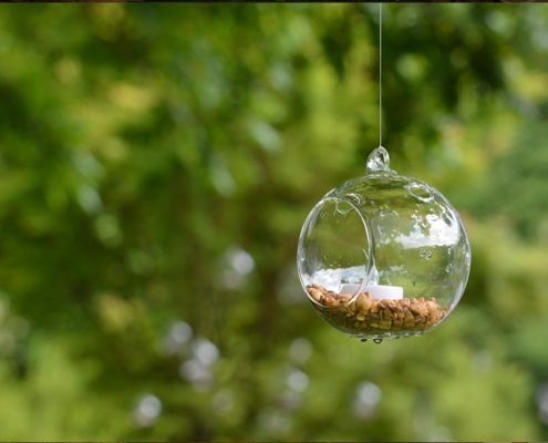 Glass orbs hung from trees with candles for event lighting