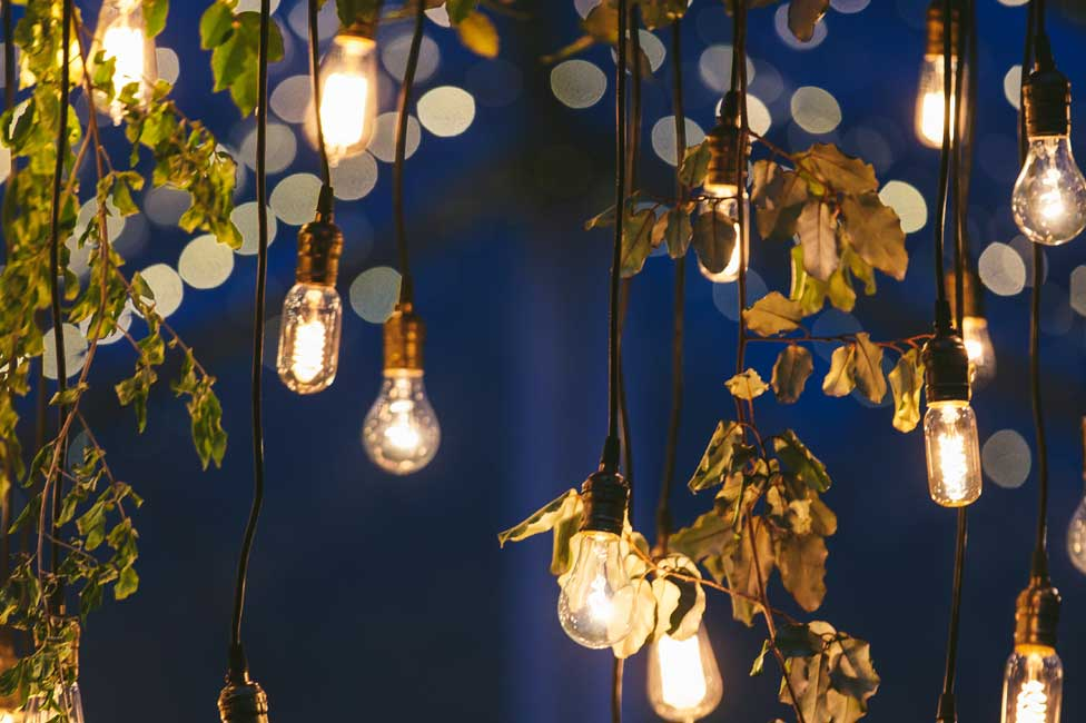 String Lights with Floral Decor